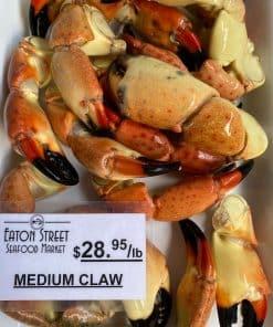 Stone Crab Claw Medium